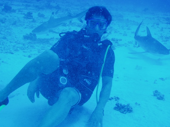 Michael scuba with sharks low res
